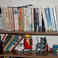 clutter-on-shelves