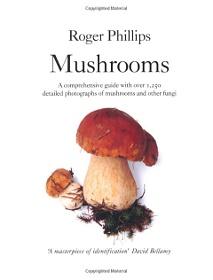 roger-phillips