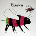 raspbee-500x500